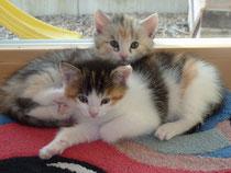 Frieda und Cilli