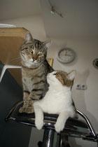 Momo und Lara