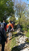 guided-hikes-with-ayroles-melissa