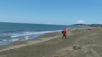 Spaziergang am kilometerlangen Sandstrand südl. von Ulcinj
