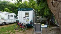 am Camp Zlokovic