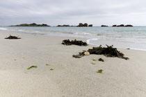 Ein Strand bei Trégastel-Plage