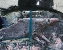 Fragmento 28 (ratas y animales 1)