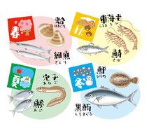食材 魚介類 蛤 サヨリ 車エビ サバ 穴子 アジ ヒラメ 黒マグロ