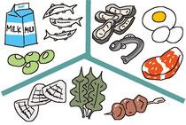 食品 食材 牛乳 小魚 豆 貝 わかめ レバー 牡蠣 うなぎ たまご 肉