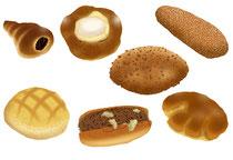食品 食材 パン 菓子パン コルネ クリームパン メロンパン カレーパン 焼きそばパン