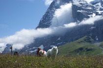 Beeindruckend die Berge