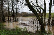 ist durch das Hochwasser ein mehrere Hundert Quadratmeter grosser See enstanden!