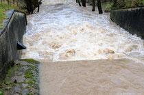 Die Aktiven der NABU Kreisgruppe Holzminden haben ganze Arbeit geleistet. Der Wasseramselkasten hat die Flut überstanden!