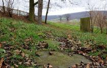 Ortstypische Sandsteinplatten führen auf dem Friedhof zum Gedenkstein