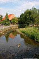 Wo die Lenne ansonsten idyllisch durch das Dorf fliesst.....