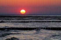 Sonnenuntergang über den Buhnenfeldern am Strand von Koserow