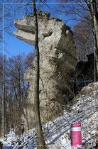 Vom Weg unterhalb der Klippen aus gesehen, steht dem Fotografen ein Baum im Weg. Aber natürlich hat der ältere Rechte!