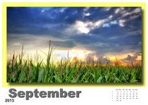 · foto-kunst-kalender 2013 · september · yak © 2012 RK