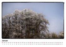 · kalender 2012 · januar · tetz · 2007 · yak © 2012 RK