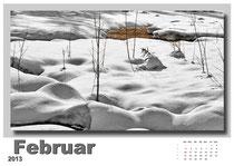 · foto-kunst-kalender 2013 · februar · yak © 2012 RK