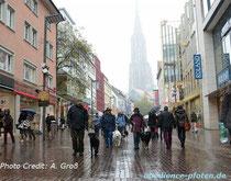 ... das Ulmer Münster hat man aber immer!