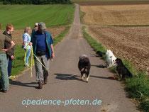 Gelände: Bleib auf Distanz mit Ablenkung