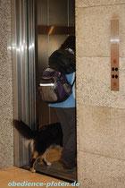 und in den Fahrstuhl