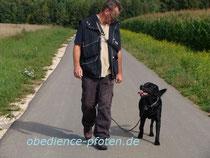 Gelände: Lange Leine laufen