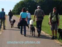 Entspanntes Fußlaufen in der Gruppe