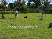 Gruppenablage Stadtpark