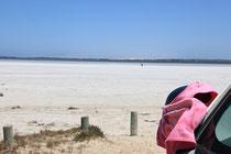 Da ist ja doch was pink am Lake!
