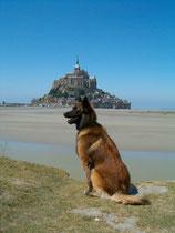 Sommerferien Frankreich, Le Mont St Michel 2003