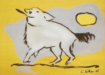 7. Weißer Hund: Druck auf Papier 50x70: 000.- €