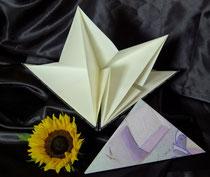Zauberbuch ( Dreieck ) mit Falttechnik