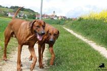 Dayo und Zina
