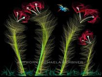 Der Kolibri
