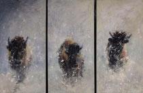 Bisons - Triptychon - Andrea Kretschmer