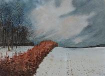 Winter im Odenwald - Ulix