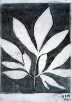 Veronika Landenberger, 2014, Bleistift und Kohle, 29,5 x 21 cm