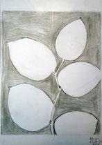 Adrian Lechner (14 Jahre), 2015, Bleistift, 29, 5 x 21 cm