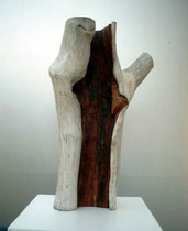 Kirsche, 60 x 34 cm, 2004