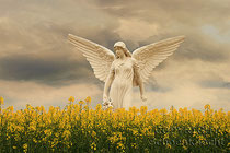 Engel gelb