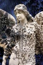 Engel dunkelblau mit Eisblumen