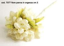 6 fiori panna