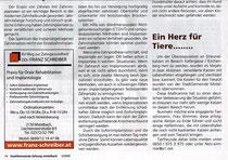 Stadtgemeindezeitung Mistelbach 2/2009