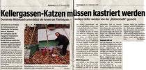 Bezirksblatt Mistelbach 12/2008