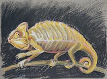 Chmäleon 6, Pastel auf Papier, 28 x 39 cm
