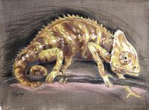 Chmäleon 4, Pastel auf Papier, 28 x 39 cm