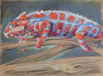 Chmäleon 1, Pastel auf Papier, 28 x 39 cm