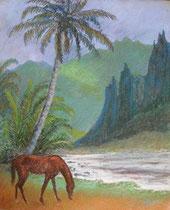 Cheval de Nuku Hiva