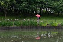 「散 歩」大阪・白鷺公園(笠松賢三)