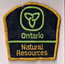 Ontario - Natural Resources  (Petit modèle / Small size model)  (Fond bleu / Blue background)  (Ancien / Obsolete)  (Usagé / Used)  1x