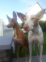 Jax und Freundin Enya
