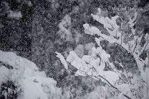 八尾町の冬景色(富山市)